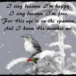I sing because...