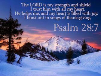 strength & shield
