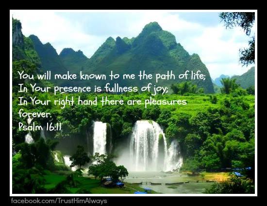 path of life