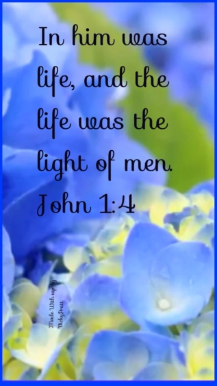 In Him was light