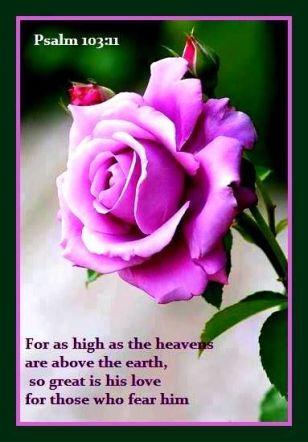 high as