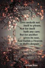 Love seeketh..